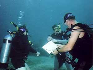 SCUBA Certification dives